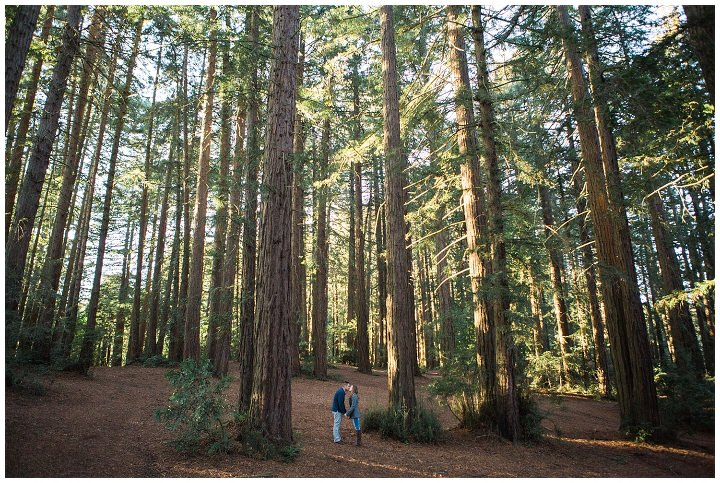 oakland forest engagement photos, redwood-engagement-session-angela-leo_0002